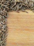 Cumin seeds border Royalty Free Stock Photography