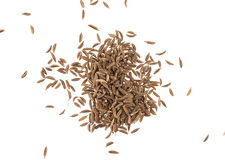 Cumin seeds or caraway isolated on white background Royalty Free Stock Photography