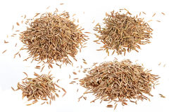 Cumin seeds or caraway isolated on white Royalty Free Stock Images