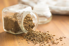 Cumin seeds or caraway. Cumin seeds or caraway in jar Royalty Free Stock Photography