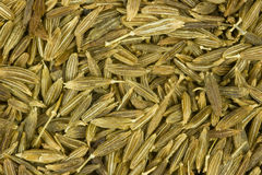 Cumin seeds close up Royalty Free Stock Photo
