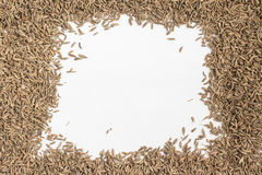Cumin Seeds Frame. Isolated in white background Royalty Free Stock Photo