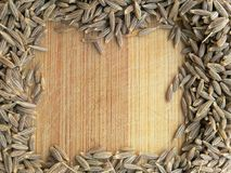 Cumin seeds frame on wooden background Stock Image