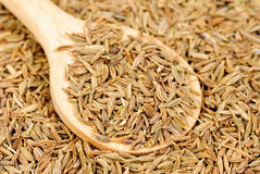 Cumin seeds macro and wooden spoon Stock Photo