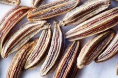 Cumin seeds reverse lens extreme macro Royalty Free Stock Image