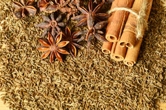 Cumin seeds with spices. Close up from cumin seeds with spices Stock Photography
