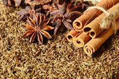 Cumin seeds with spices. Close up from cumin seeds with spices Royalty Free Stock Image