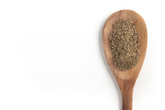 Cumin seeds into a spoon. Isolated in white background Royalty Free Stock Photo