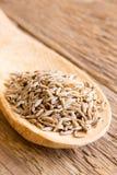 Cumin seeds Stock Photography