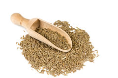 Cumin seeds in a spoon for spices Royalty Free Stock Image