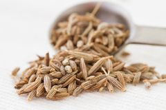 Cumin seeds and spoon. Cumin seeds spilling from a measuring spoon Stock Photography