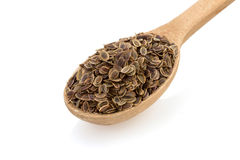 Cumin seeds in spoon on white Royalty Free Stock Image