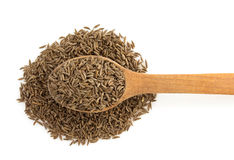 Cumin seeds in spoon Royalty Free Stock Image