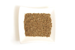Cumin seeds in square white bowl Stock Images