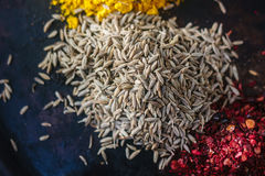 Cumin seeds surrounded by spices over black surface. Royalty Free Stock Photography