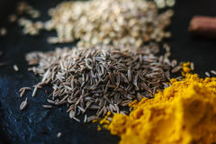 Cumin seeds surrounded by spices over black surface. Royalty Free Stock Photo
