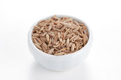 Cumin seeds in a white bowl on white background. Royalty Free Stock Photo