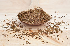 Cumin Seeds on wooden serving spoon Stock Photography