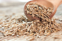 Cumin seeds in a wooden spoon Royalty Free Stock Photo