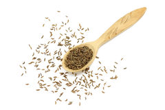 Cumin seeds in a wooden spoon Stock Photography