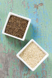 Cumin and sesame seeds Royalty Free Stock Photos