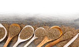 Cumin spice Royalty Free Stock Photo