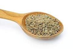 Cumin in a spoon Stock Photos