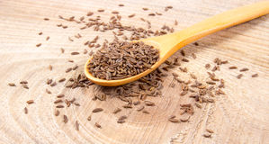 Cumin in a spoon . Close Up . Cumin in a spoon on the wooden background Royalty Free Stock Photo