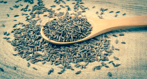 Cumin in a spoon . Close Up . Cumin in a spoon on the wooden background Royalty Free Stock Photos