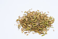 Cumin in white background Royalty Free Stock Images