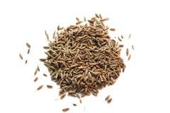 cummin堆种子 免版税图库摄影