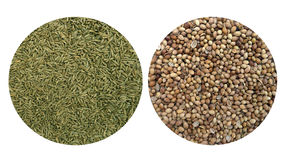 Cummin and coriander seeds Stock Photos