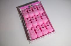 Free Cumming, Georgia/USA-4/12/20 Peeps Marshmallows Pink Easter Bunnies Royalty Free Stock Image - 178931346