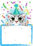 Cumpleaños blanco del tigre del bebé Imagen de archivo