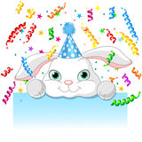 Cumpleaños del conejito Fotografía de archivo libre de regalías