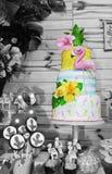 Cumpleaños del flamenco Imagen de archivo libre de regalías