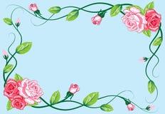 Cumprimentando o cartão cor-de-rosa floral Imagem de Stock