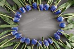 Cumprimento botânico do dia do ` s da mulher do conceito das flores selvagens da grinalda de Art Floral Background Round Frame da Fotos de Stock Royalty Free
