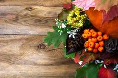 Cumprimento da ação de graças com Rowan, os cones e as folhas Imagem de Stock
