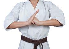 Cumprimento nas artes marciais fotos de stock