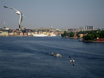 Cumprimentos de Éstocolmo, Suécia pelo ar e pelo mar fotos de stock royalty free