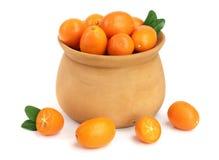 Cumquat或金桔与叶子在木碗在白色背景关闭 库存照片