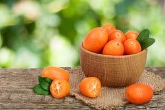 Cumquat或金桔与叶子在木碗在老木桌上有模糊的庭院背景 图库摄影