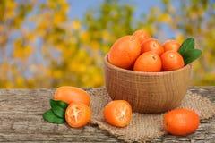 Cumquat或金桔与叶子在木碗在老木桌上有模糊的庭院背景 库存图片