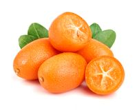 Cumquat或金桔与叶子在白色背景关闭 库存照片