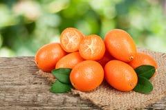 Cumquat或金桔与叶子在老木桌上有模糊的庭院背景 图库摄影