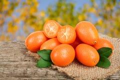 Cumquat或金桔与叶子在老木桌上有模糊的庭院背景 库存照片