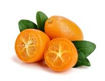 Cumquat或金桔与在白色背景关闭隔绝的叶子  免版税库存图片
