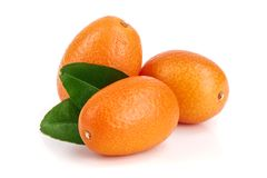 Cumquat或金桔与在白色背景关闭隔绝的叶子  库存照片