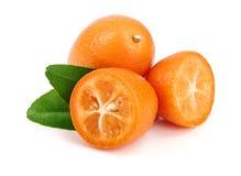 Cumquat或金桔与在白色背景关闭隔绝的叶子  库存图片